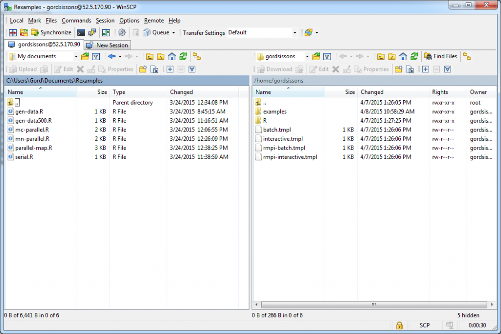 winscp_session
